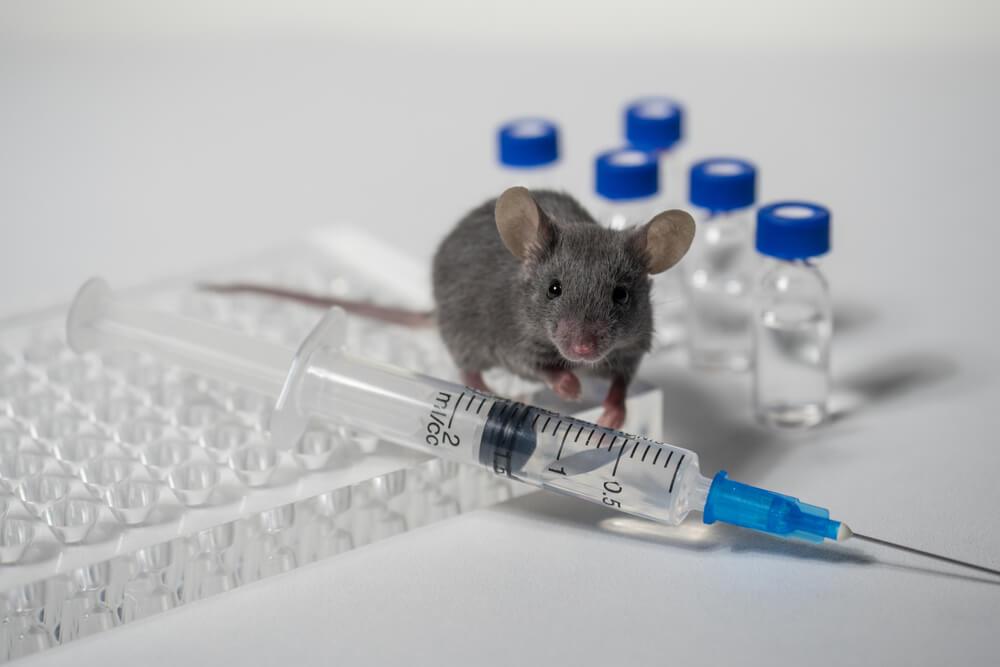 Vaccins en Retrovirussen: Een klokkenluider onthult wat de regering verbergt